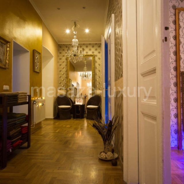 LUXURY – erotic massage Prague